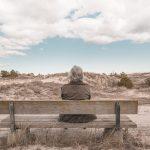 【高齢者講習】認知症の人ってどのくらいいるの?