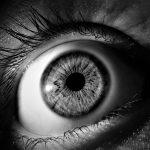 ドライブレコーダー義務化により超監視社会の到来?