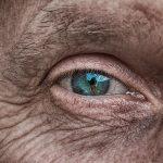 【高齢者講習】適性検査とは 内容をわかりやすく解説